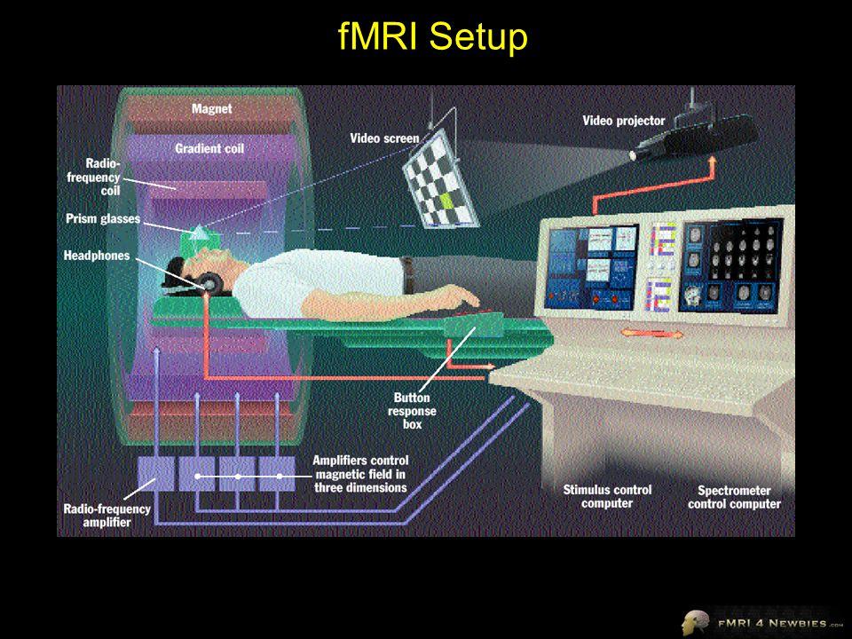 fMRI Setup