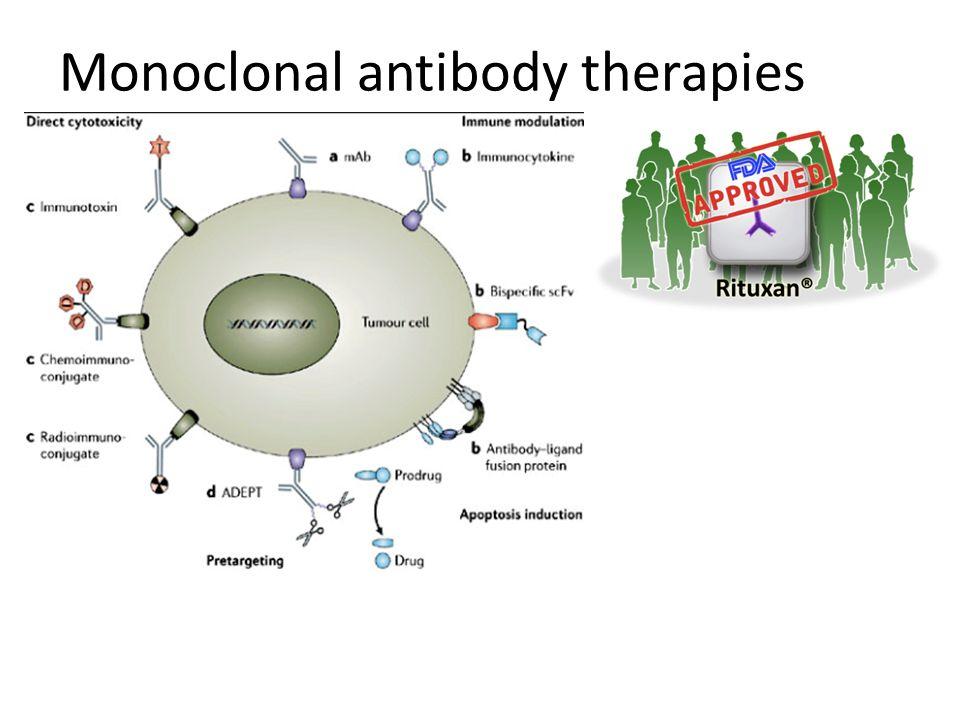Monoclonal antibody therapies