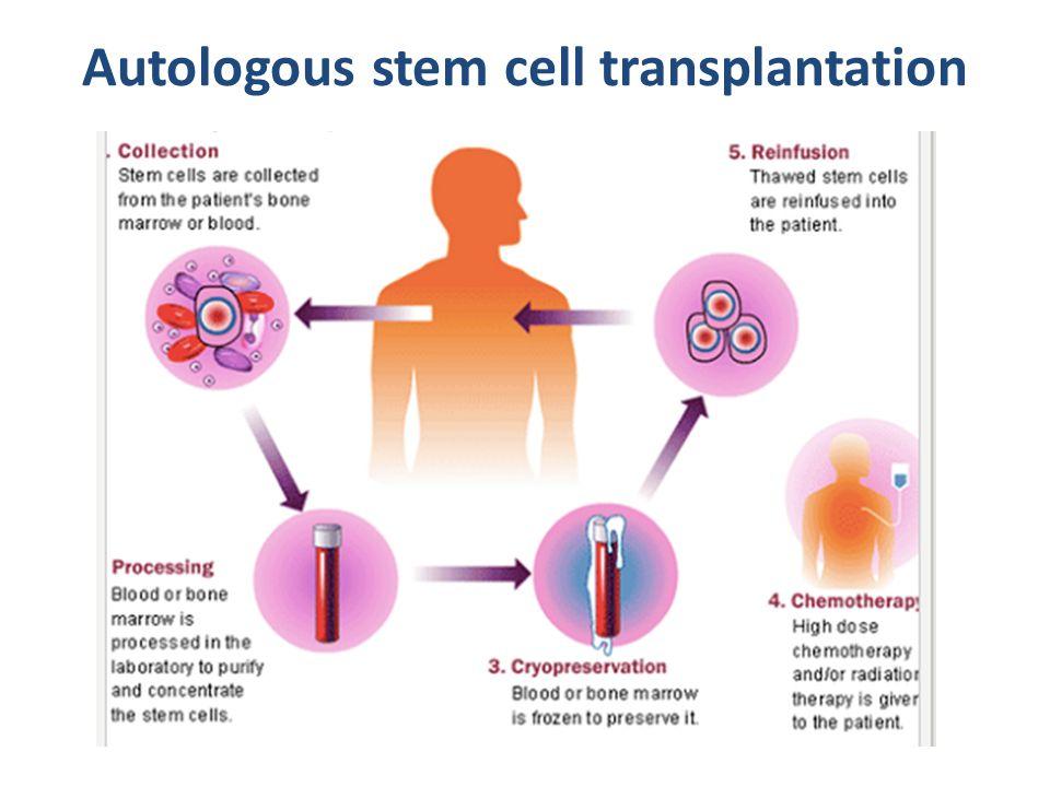 Autologous stem cell transplantation