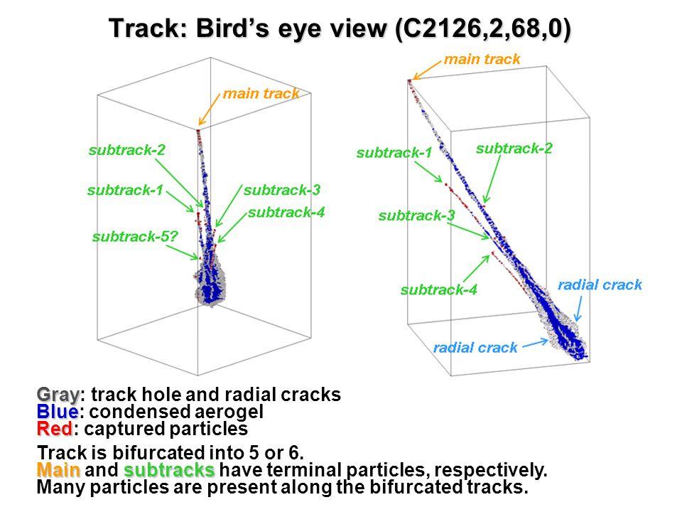 Track size vs.