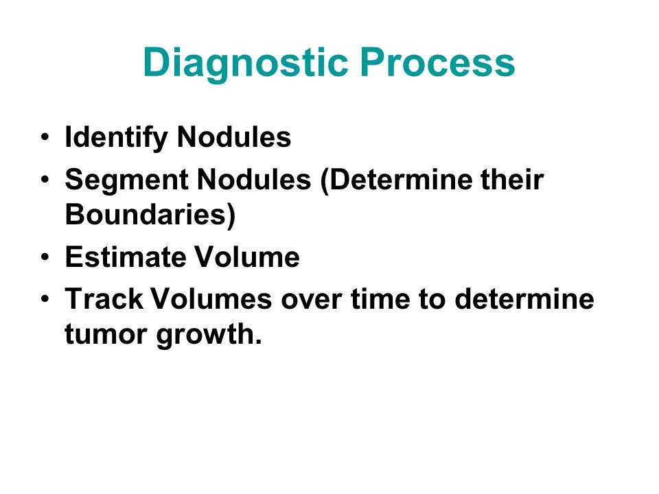 Example Automatic Nodule Segmentations