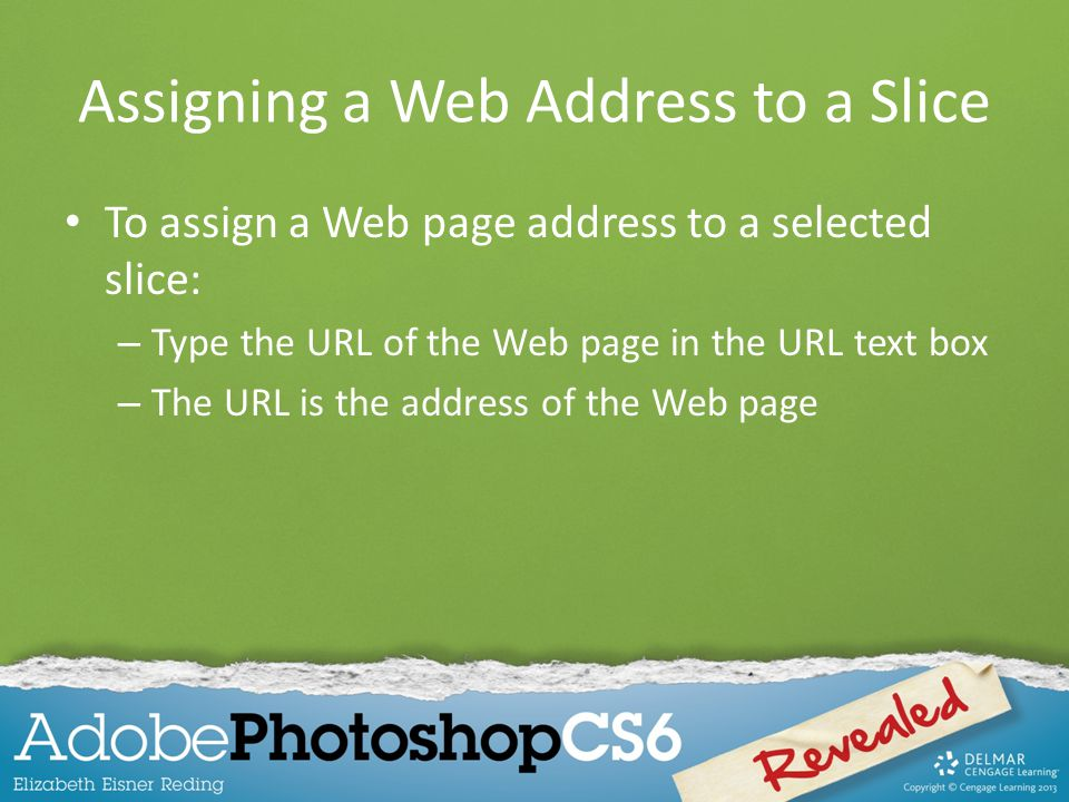 Assigning a Web Address to a Slice To assign a Web page address to a selected slice: – Type the URL of the Web page in the URL text box – The URL is the address of the Web page