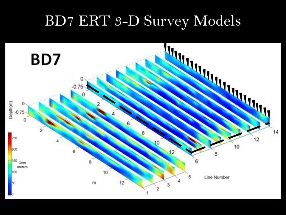 BD7 ERT 3-D Survey Models