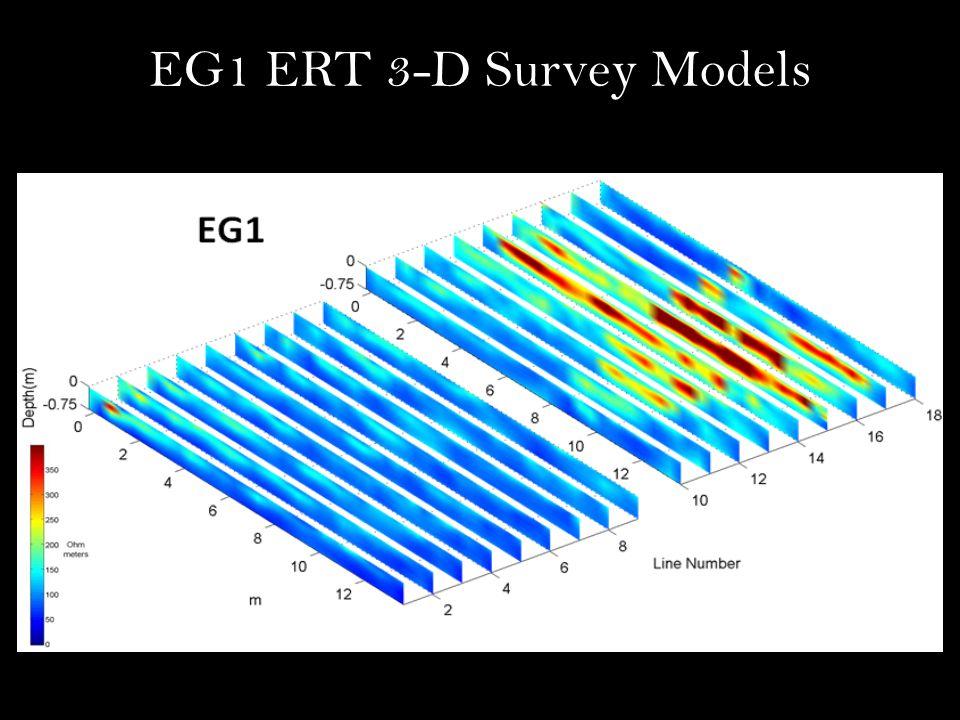 EG1 ERT 3-D Survey Models