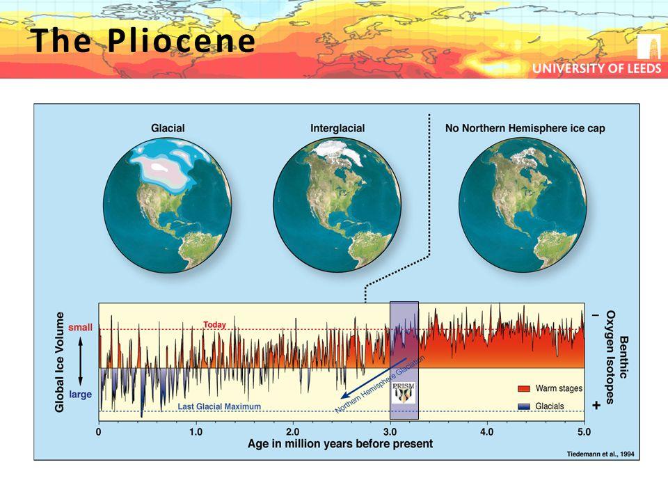 The Pliocene