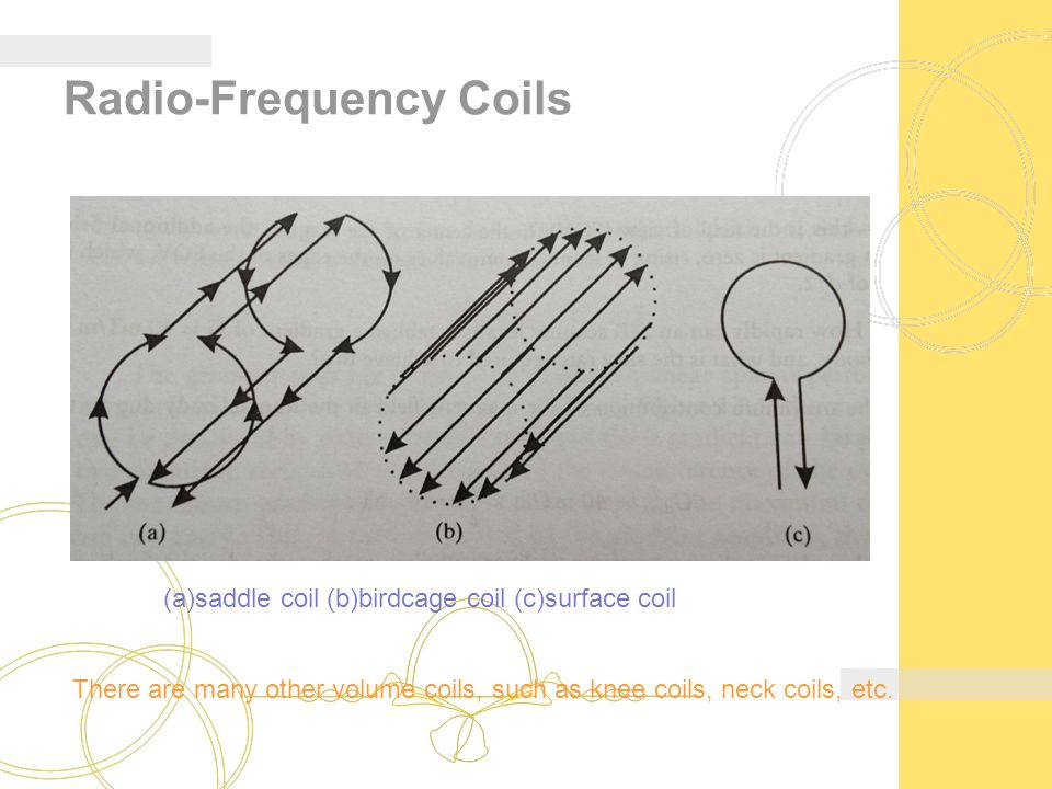 Radio-Frequency Coils (a)saddle coil (b)birdcage coil (c)surface coil There are many other volume coils, such as knee coils, neck coils, etc.