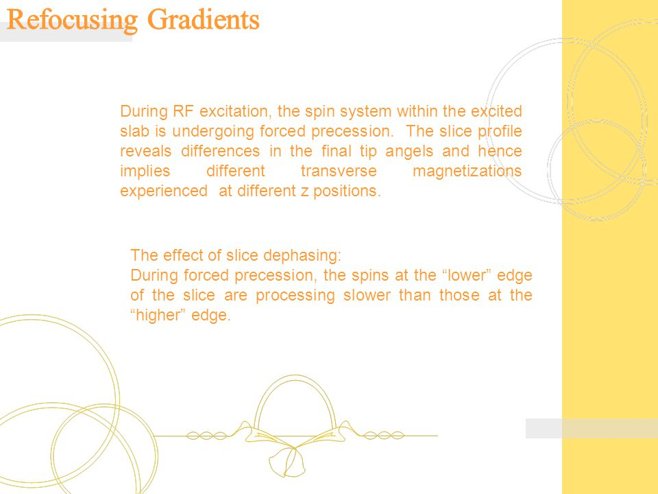 During RF excitation, the spin system within the excited slab is undergoing forced precession.