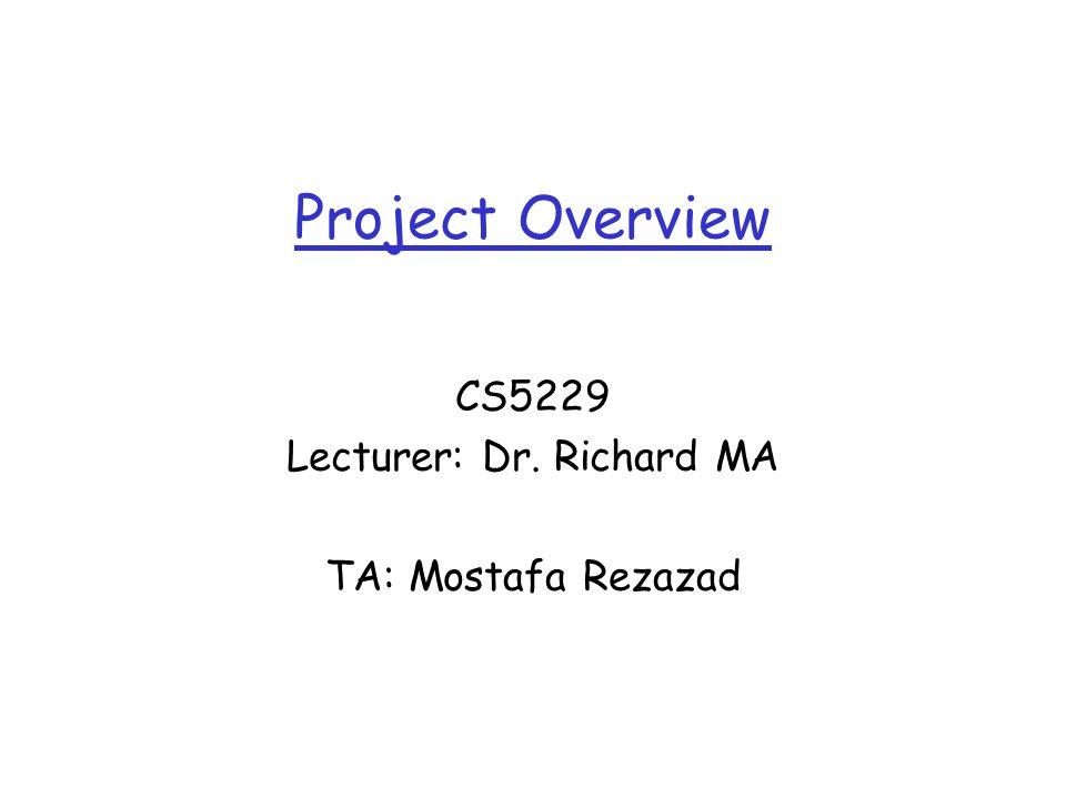 Project Overview CS5229 Lecturer: Dr. Richard MA TA: Mostafa Rezazad