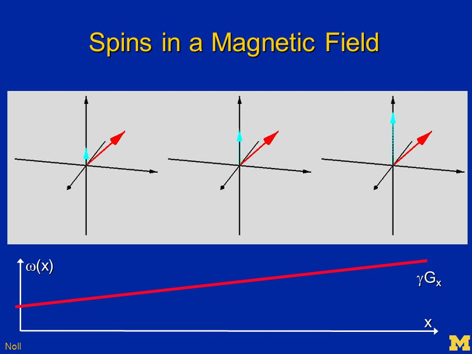 Noll Some Common Imaging Methods Conventional (spin-warp) ImagingConventional (spin-warp) Imaging Echo Planar Imaging (EPI)Echo Planar Imaging (EPI) Spiral ImagingSpiral Imaging