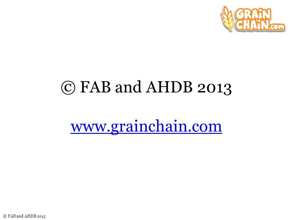 © FAB and AHDB 2013 © FAB and AHDB 2013 www.grainchain.com www.grainchain.com