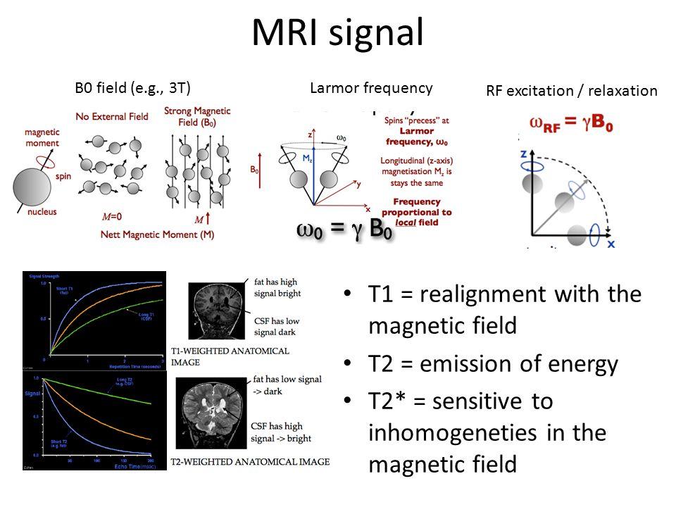 MRI signal Gradient field Summary of MRI MORE INFORMATION: http://www.cis.rit.edu/htbooks/mri/