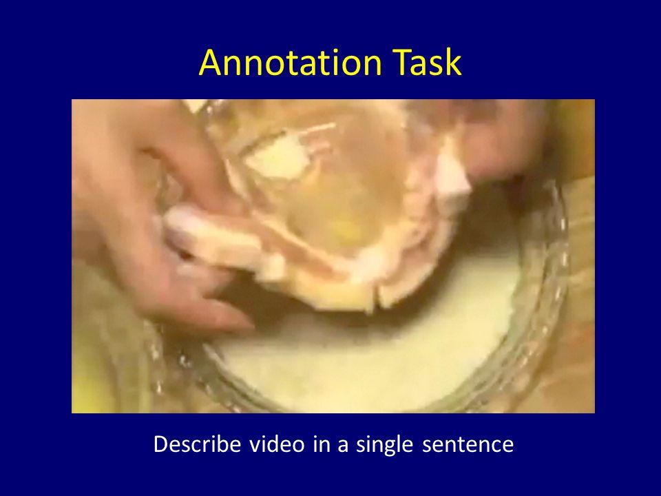 Annotation Task Describe video in a single sentence