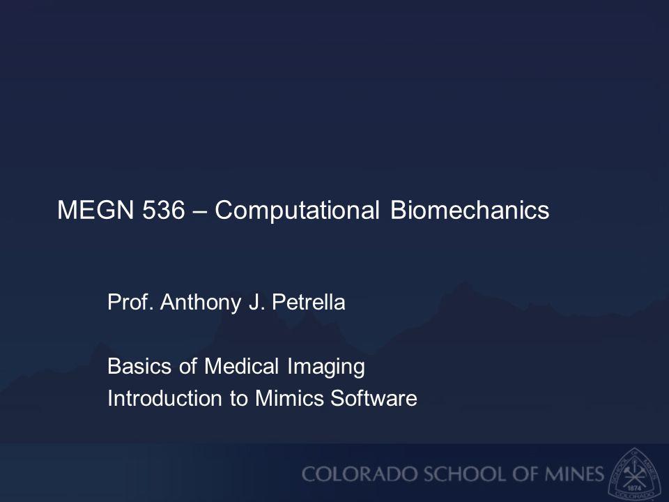 MEGN 536 – Computational Biomechanics Prof. Anthony J.