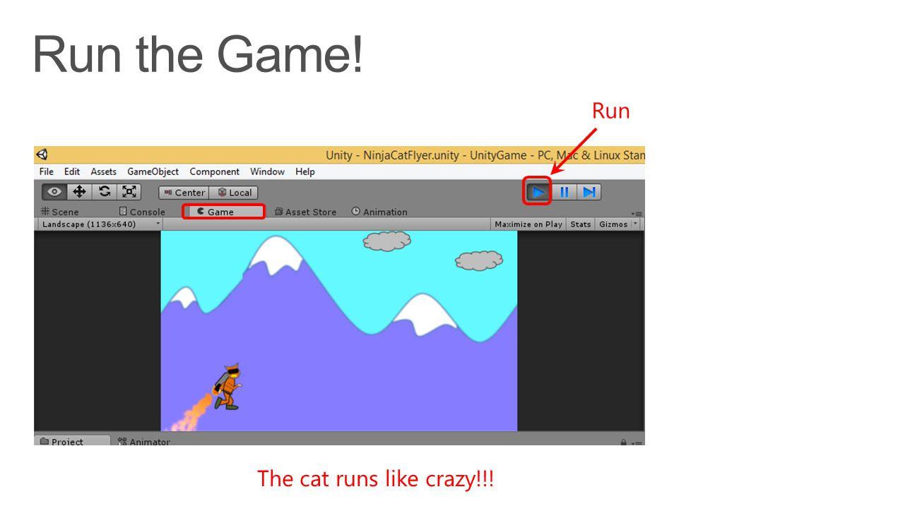 The cat runs like crazy!!! Run
