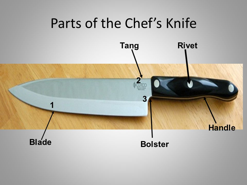 Parts of the Chef's Knife Blade 1 Tang 2 3 Bolster Rivet Handle