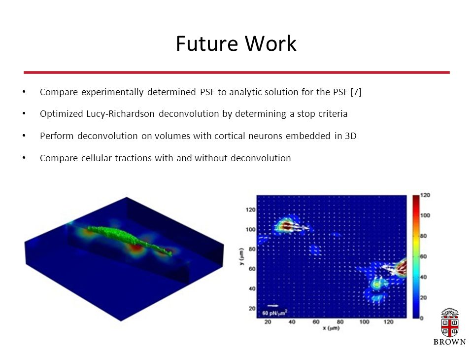 Future Work Compare experimentally determined PSF to analytic solution for the PSF [7] Optimized Lucy-Richardson deconvolution by determining a stop criteria Perform deconvolution on volumes with cortical neurons embedded in 3D Compare cellular tractions with and without deconvolution