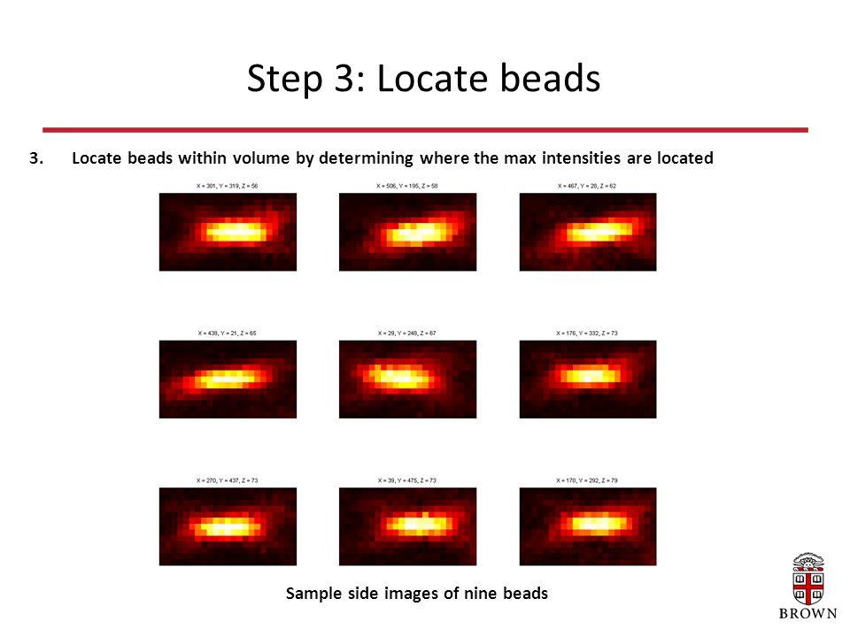 Step 3: Locate beads 3.