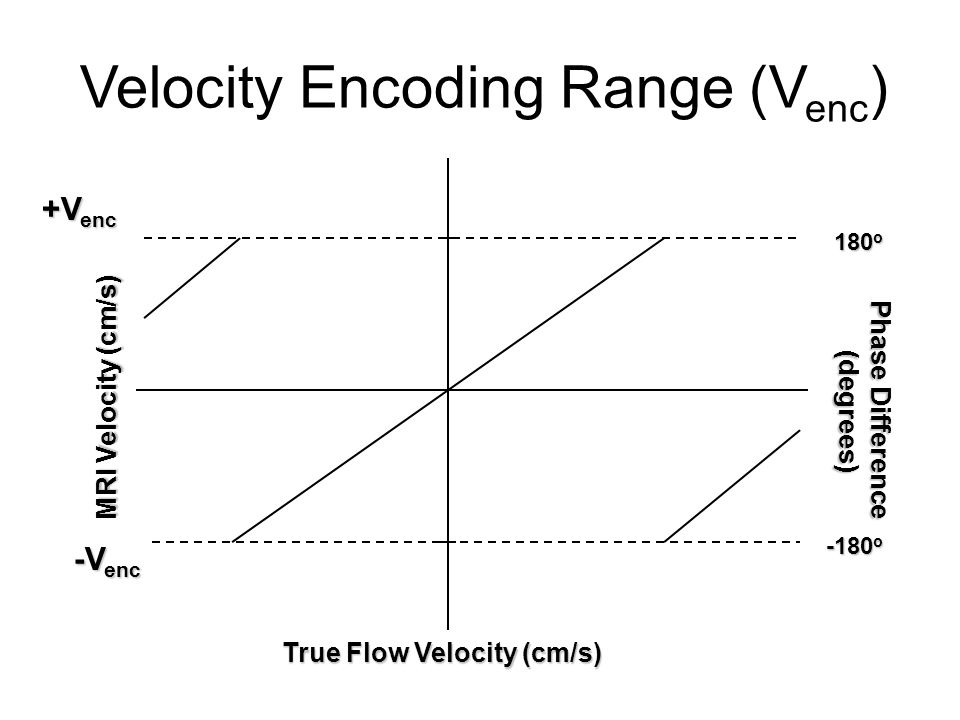 Velocity Encoding Range (V enc ) -V enc +V enc Phase Difference (degrees) MRI Velocity (cm/s) 180 o -180 o True Flow Velocity (cm/s)