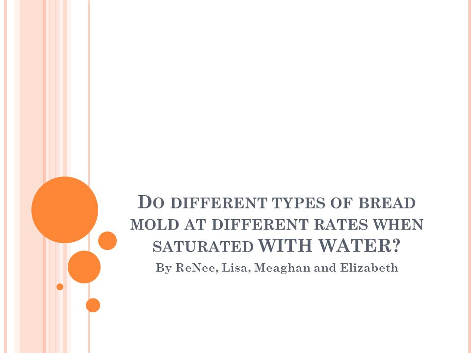 D O DIFFERENT TYPES OF BREAD MOLD AT DIFFERENT RATES WHEN SATURATED WITH WATER? By ReNee, Lisa, Meaghan and Elizabeth