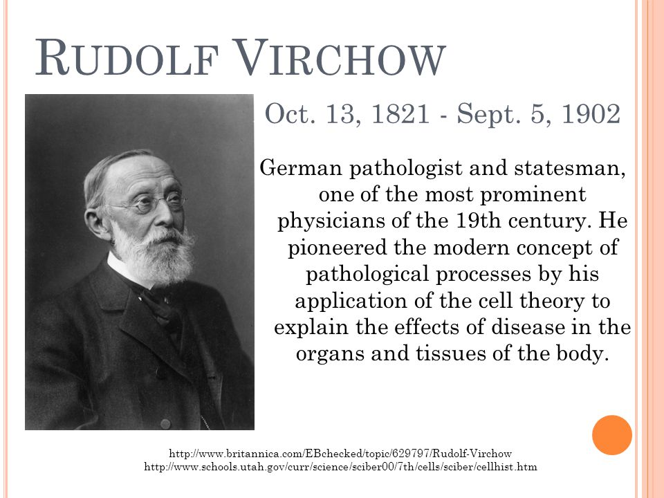 R UDOLF V IRCHOW German pathologist and statesman, one of the most prominent physicians of the 19th century.