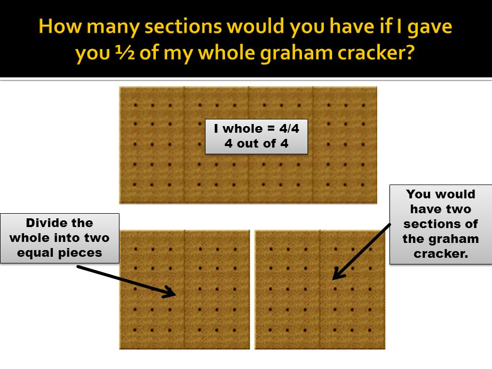 I whole = 4/4 4 out of 4 I whole = 4/4 4 out of 4 Divide the whole into two equal pieces You would have two sections of the graham cracker.