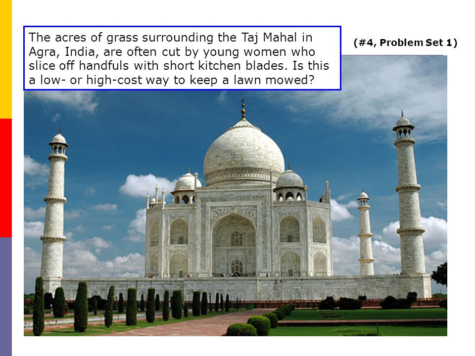 (#4, Problem Set 1) The acres of grass surrounding the Taj Mahal in Agra, India, are often cut by young women who slice off handfuls with short kitchen blades.