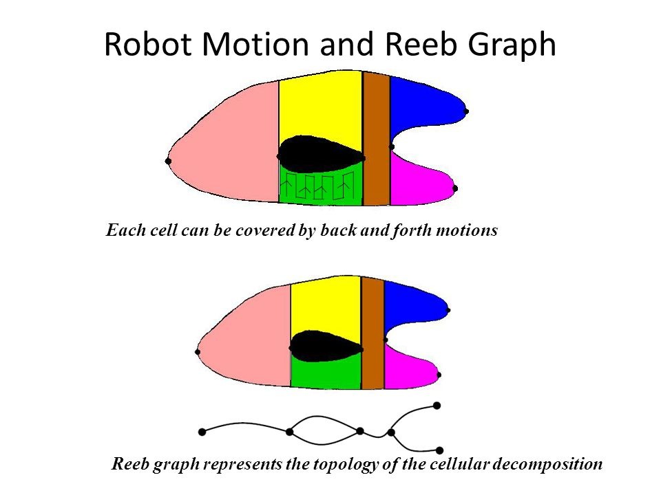 Robot Motion and Reeb Graph Each cell can be covered by back and forth motions Reeb graph represents the topology of the cellular decomposition