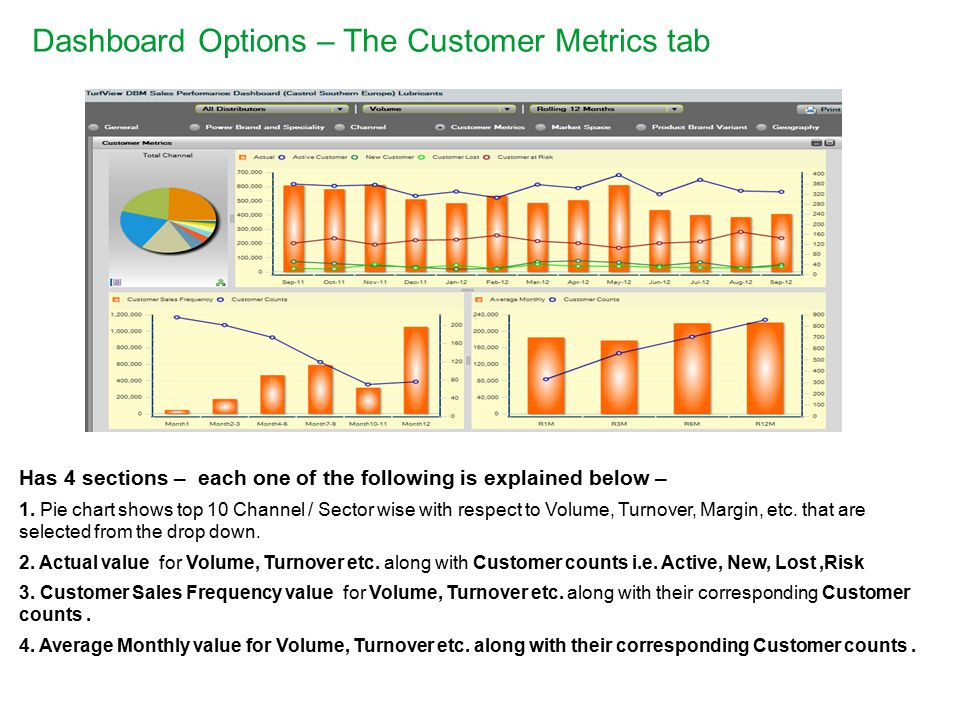 Dashboard Options – The Customer Metrics tab Has 4 sections – each one of the following is explained below – 1.