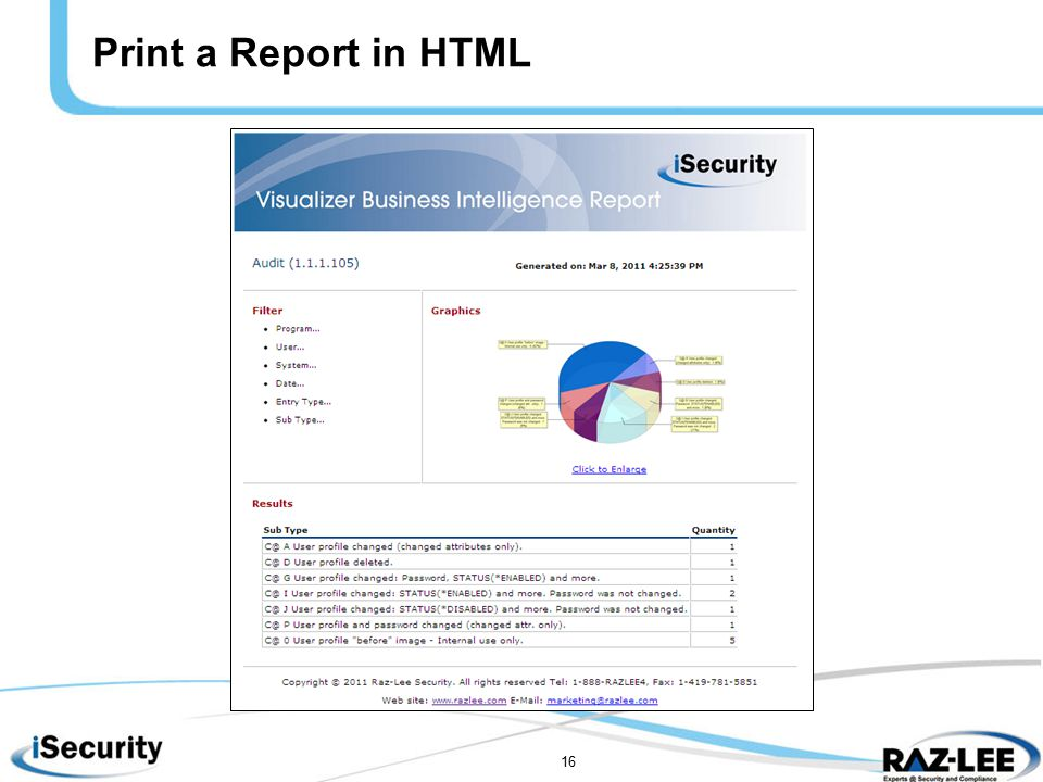16 Print a Report in HTML