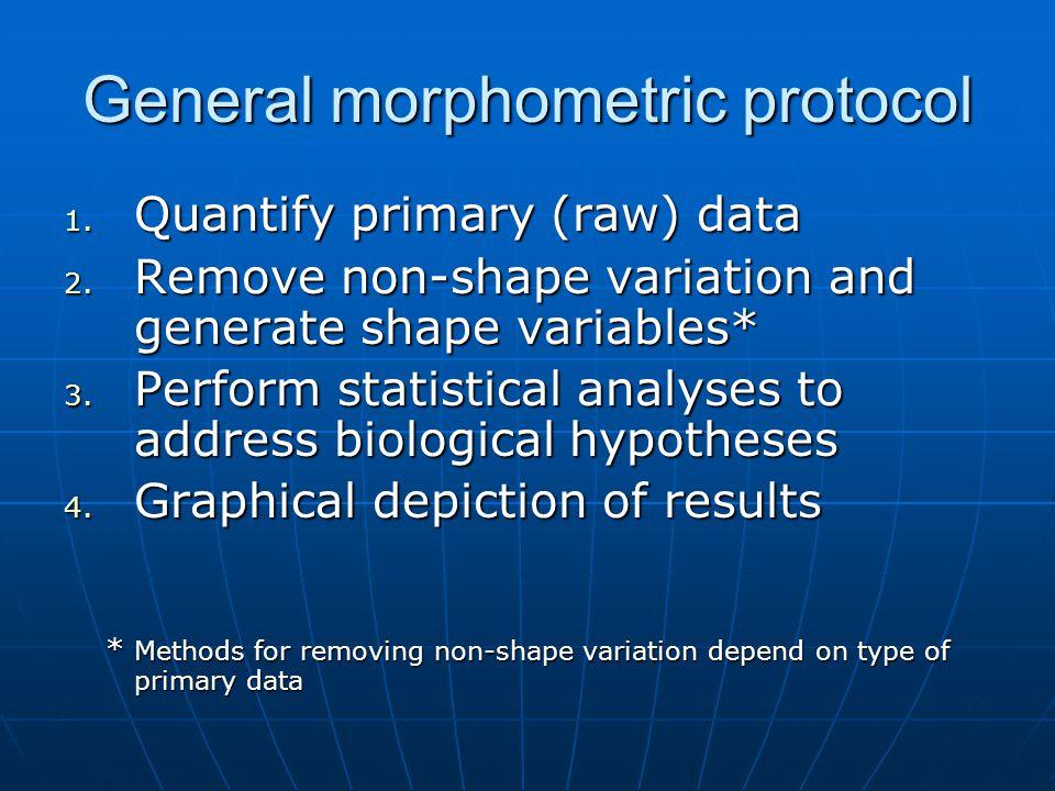 General morphometric protocol 1.Quantify primary (raw) data 2.