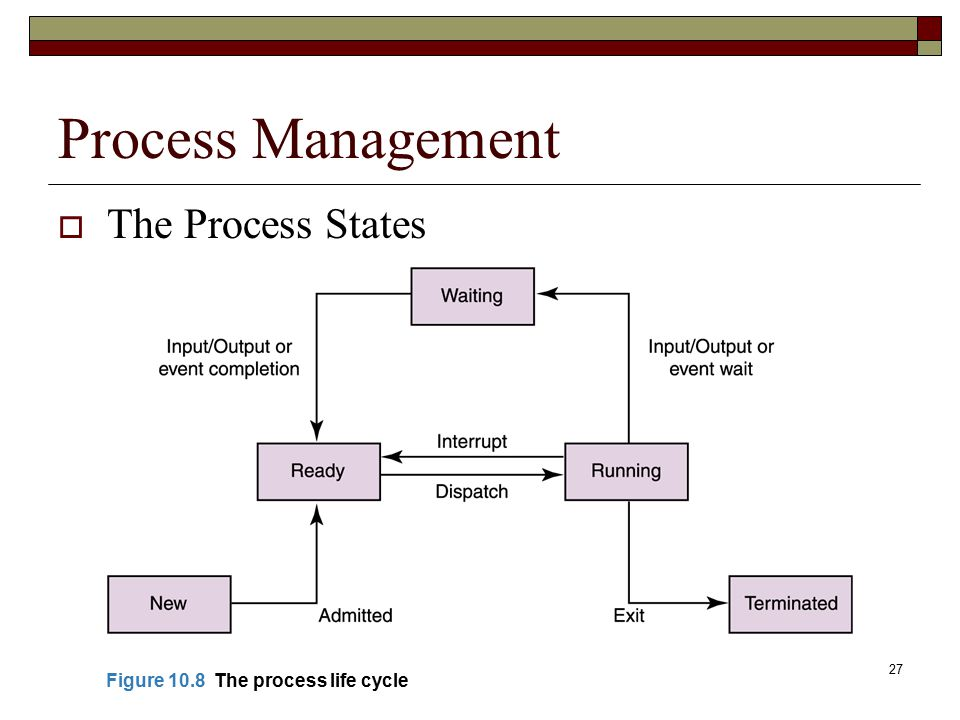 27 Process Management  The Process States Figure 10.8 The process life cycle