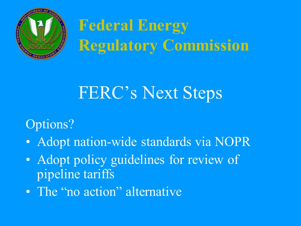 Federal Energy Regulatory Commission FERC's Next Steps Options.