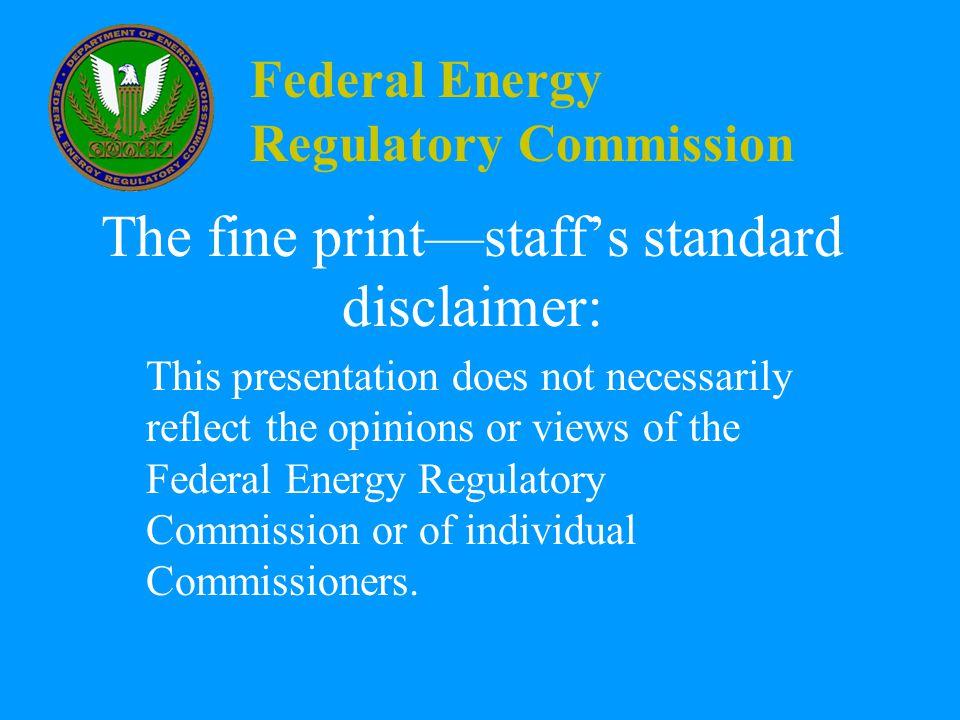 Federal Energy Regulatory Commission FERC's Next Steps Options.
