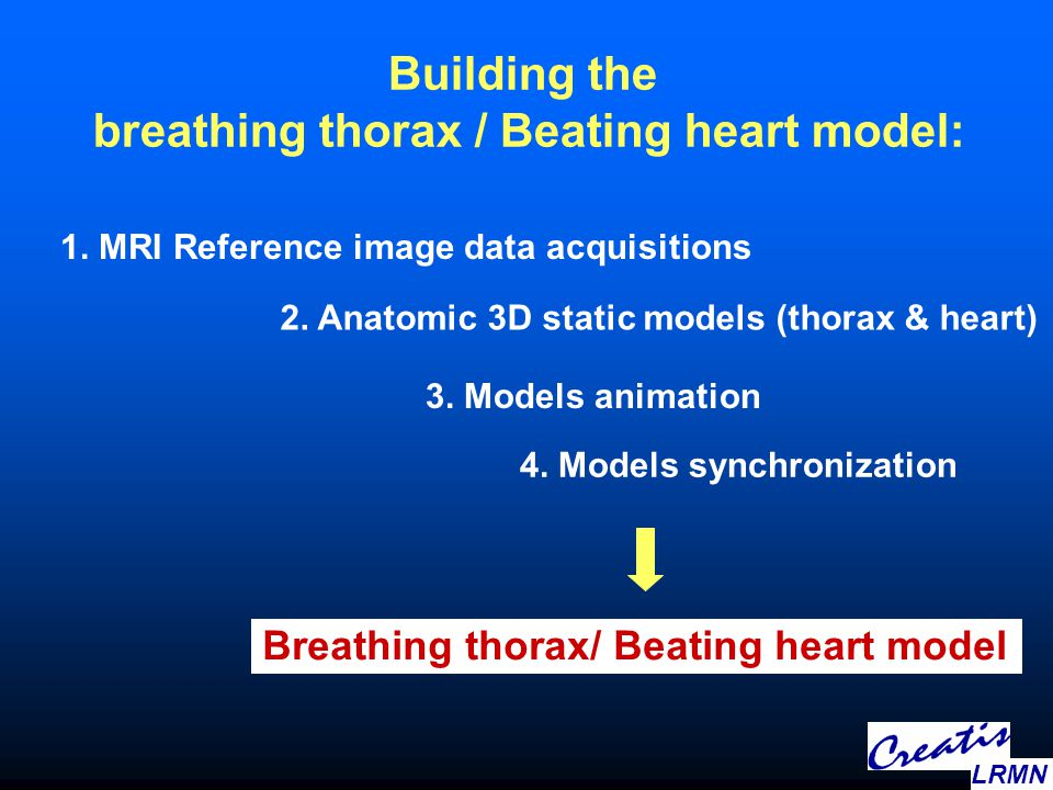 Building the breathing thorax / Beating heart model: 1. MRI Reference image data acquisitions 2. Anatomic 3D static models (thorax & heart) 3. Models