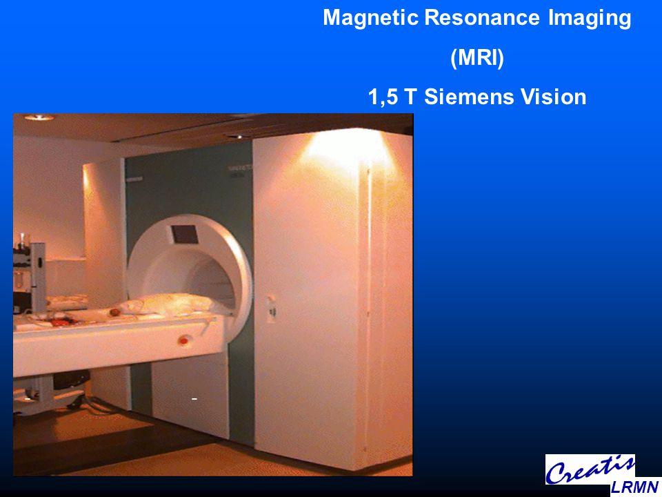 -- Magnetic Resonance Imaging (MRI) 1,5 T Siemens Vision LRMN