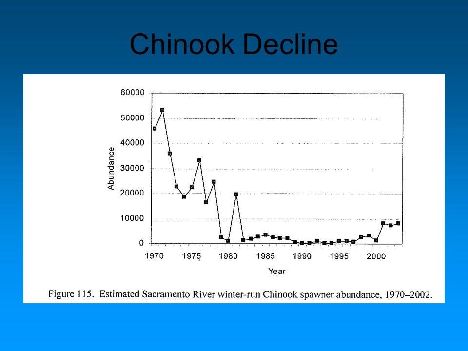 Chinook Decline