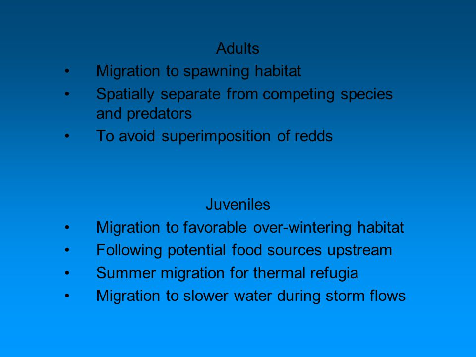 Adults Migration to spawning habitat Spatially separate from competing species and predators To avoid superimposition of redds Juveniles Migration to favorable over-wintering habitat Following potential food sources upstream Summer migration for thermal refugia Migration to slower water during storm flows