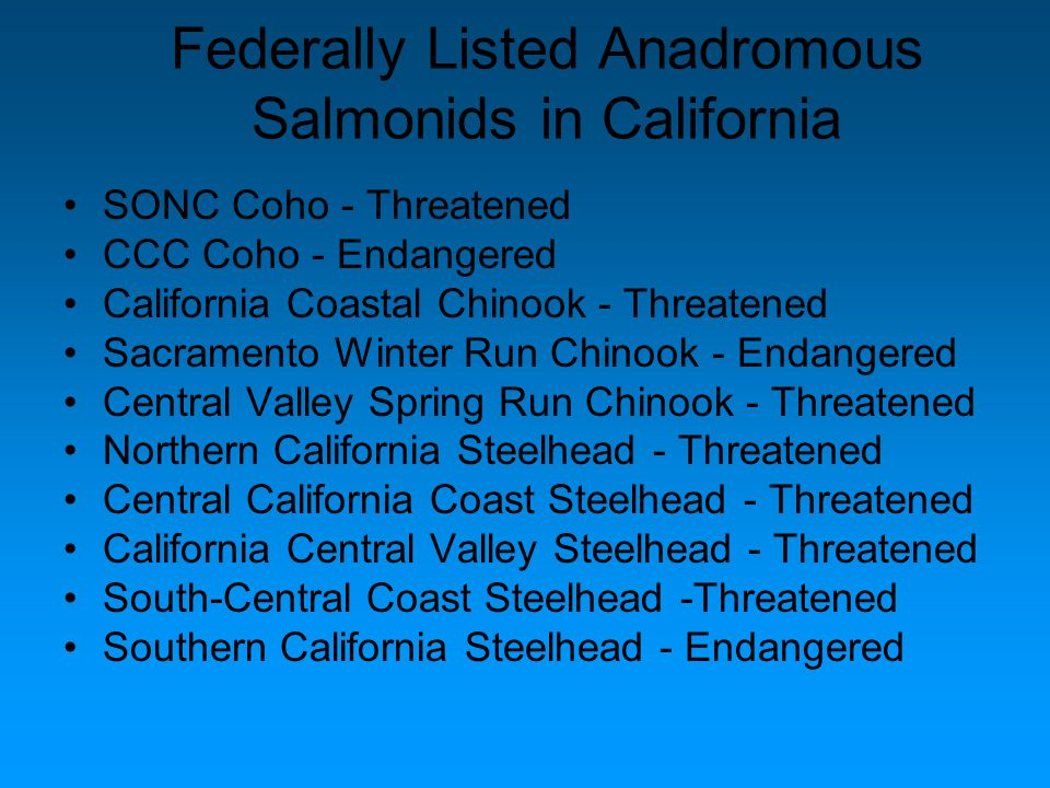 Federally Listed Anadromous Salmonids in California SONC Coho - Threatened CCC Coho - Endangered California Coastal Chinook - Threatened Sacramento Winter Run Chinook - Endangered Central Valley Spring Run Chinook - Threatened Northern California Steelhead - Threatened Central California Coast Steelhead - Threatened California Central Valley Steelhead - Threatened South-Central Coast Steelhead -Threatened Southern California Steelhead - Endangered