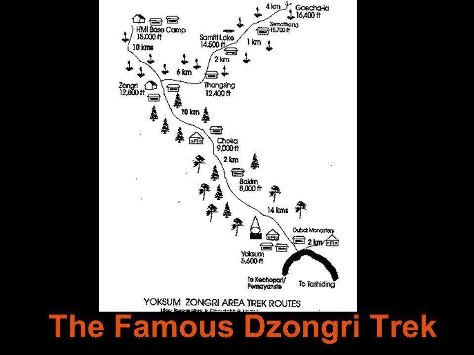 The Famous Dzongri Trek