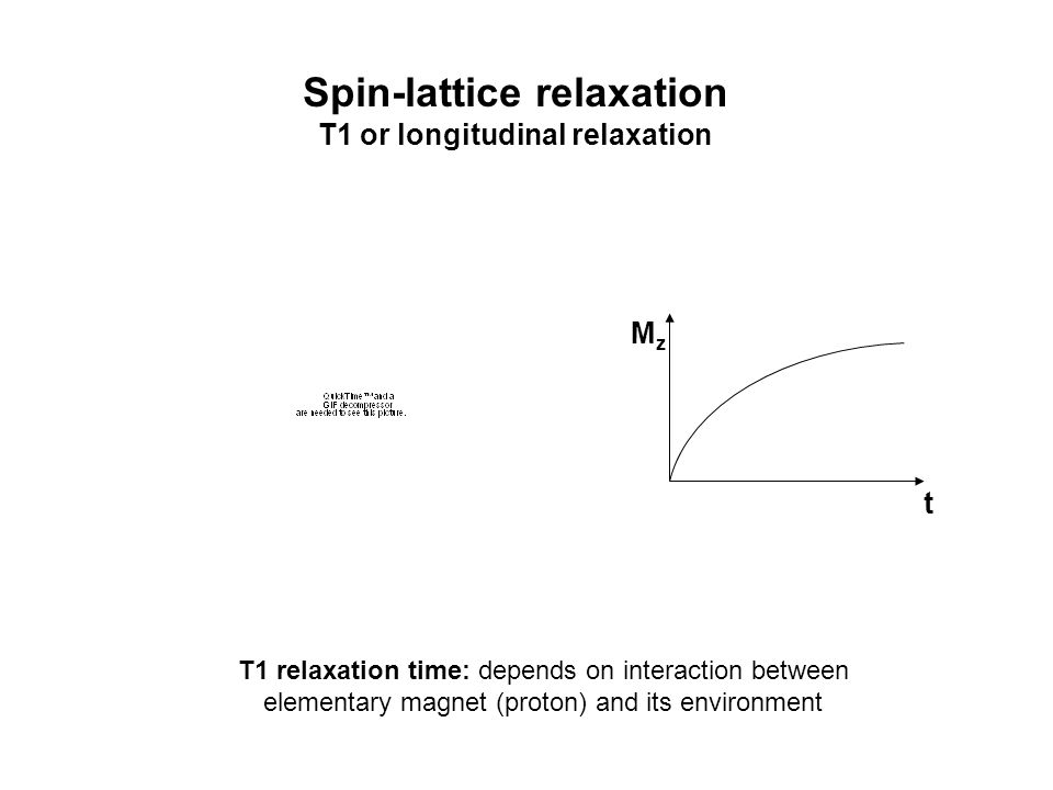 Spin-spin relaxation T2 or transverse relaxation M xy t free induction decay (FID) T2 relaxation time: depends on interaction between elementary magnets (protons)