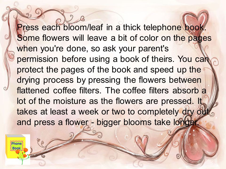 Press each bloom/leaf in a thick telephone book. Some flowers will leave a bit of color on the pages when you're done, so ask your parent's permission