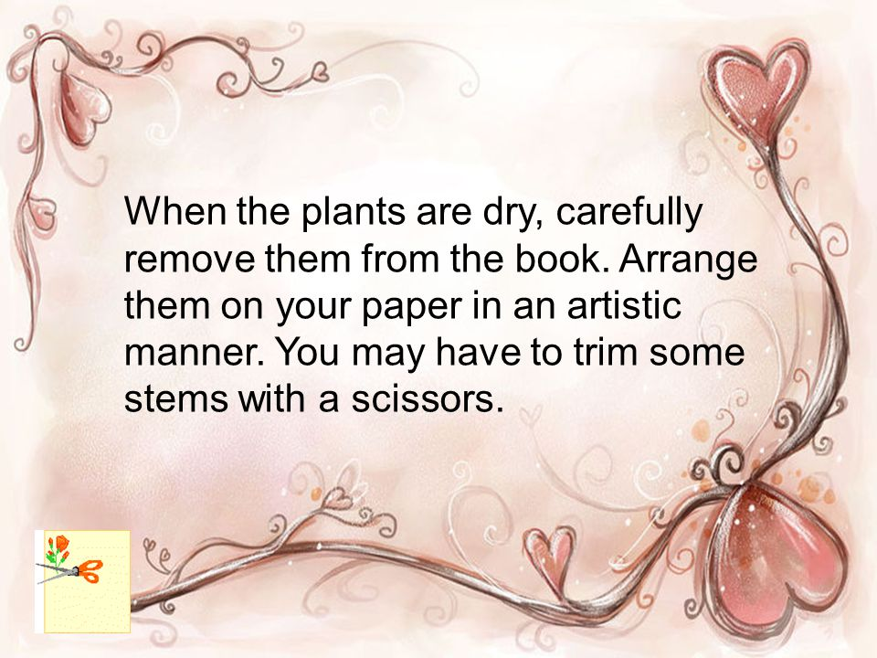 When the plants are dry, carefully remove them from the book.