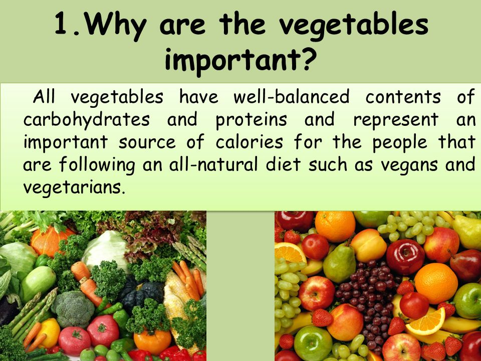 1.Why are the vegetables important? All vegetables have well-balanced contents of carbohydrates and proteins and represent an important source of calo