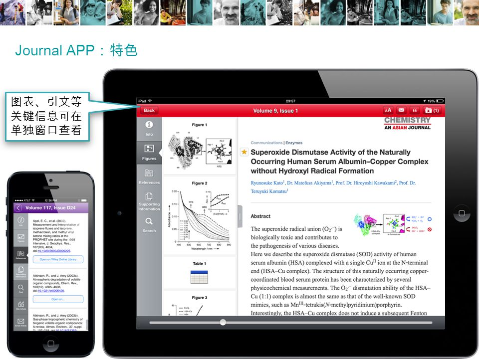 Journal APP :特色 图表、引文等 关键信息可在 单独窗口查看