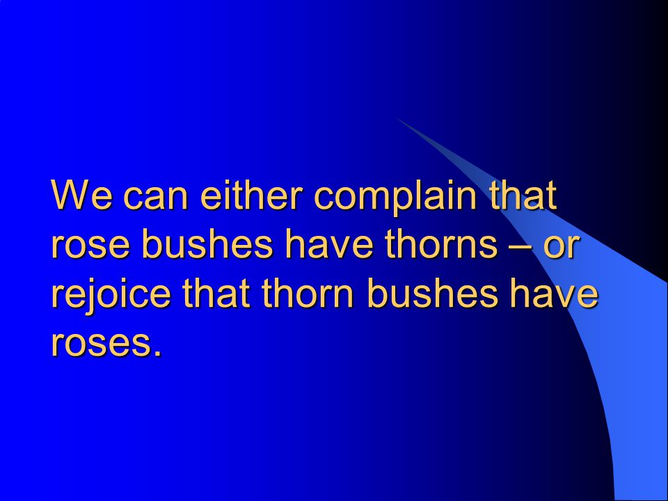 We can either complain that rose bushes have thorns – or rejoice that thorn bushes have roses.