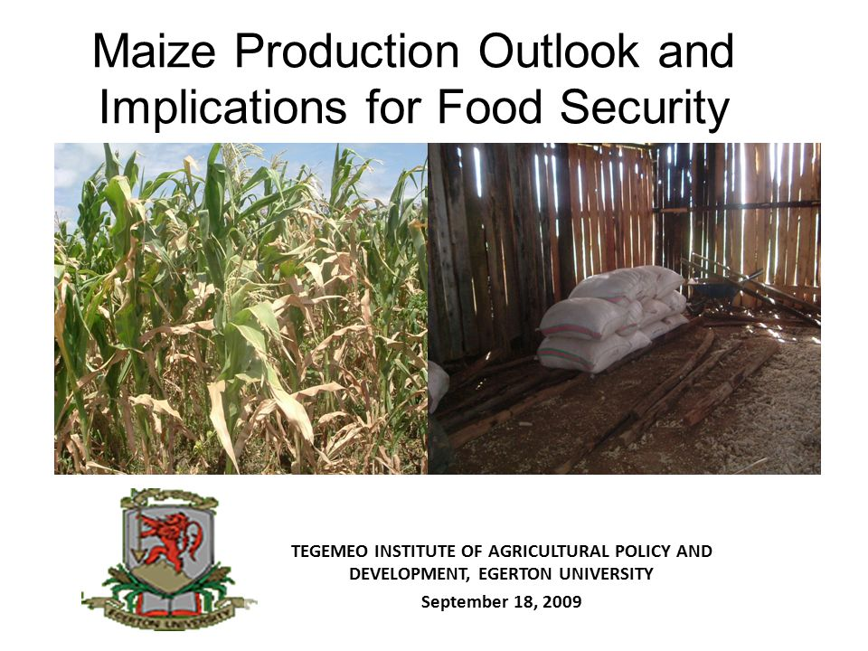 Maize Production Outlook and Implications for Food Security TEGEMEO INSTITUTE OF AGRICULTURAL POLICY AND DEVELOPMENT, EGERTON UNIVERSITY September 18,