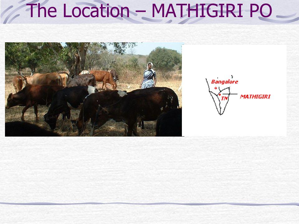 The Location – MATHIGIRI PO