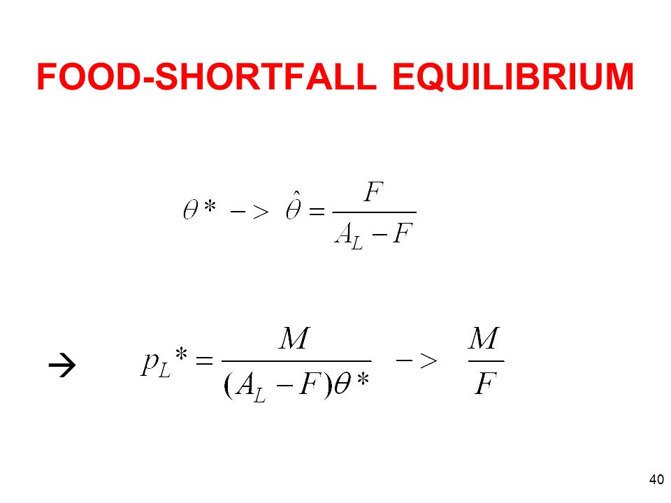40 FOOD-SHORTFALL EQUILIBRIUM 