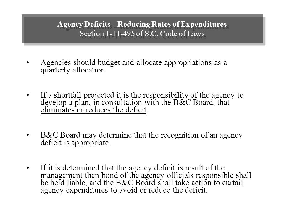 Agency Deficits – Reducing Rates of Expenditures Section 1-11-495 of S.C.