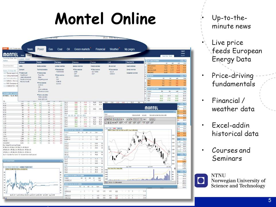 5 Montel Online Up-to-the- minute news Live price feeds European Energy Data Price-driving fundamentals Financial / weather data Excel-addin historical data Courses and Seminars